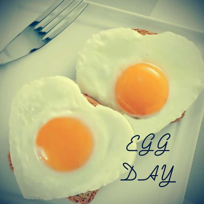 World Egg Day With Heart Shaped Eggs Love Picture Funnyexpo