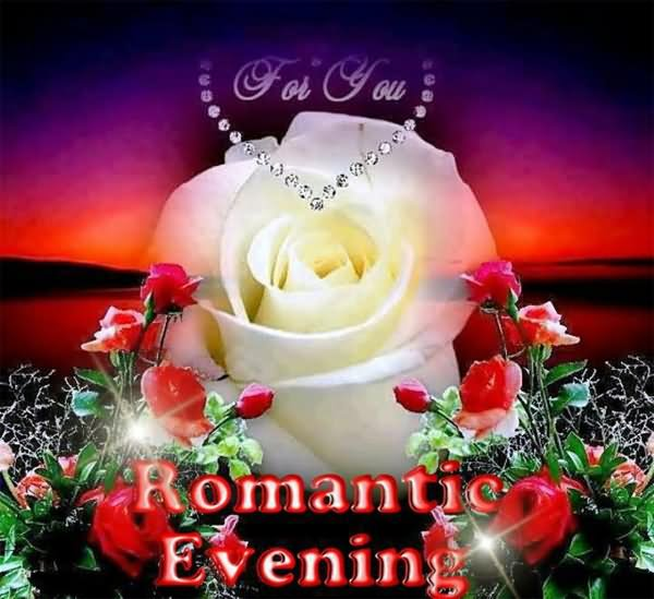 best romantic evening with white rose good evening wishes picture