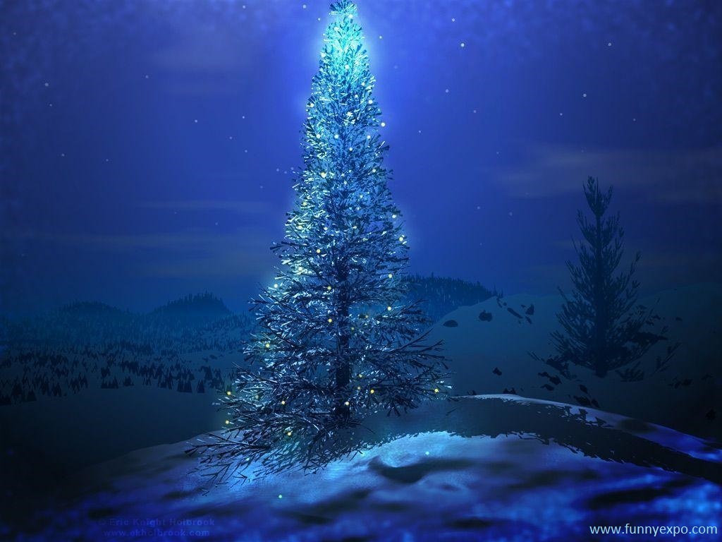 Christmas Tree Images Hd.50 Best Christmas Tree With Beautiful Lights Hd Wallpapers