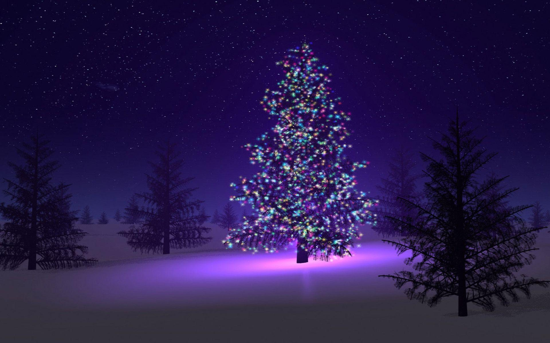 50 Best Christmas Tree With Beautiful Lights Hd Wallpapers And