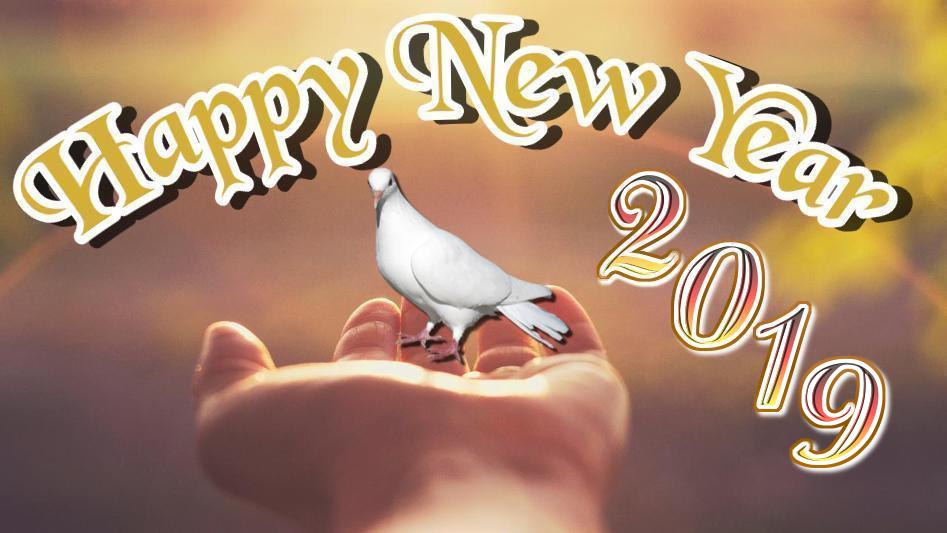 50 Most Beautiful Happy New Year 2019 Wishes Images Hd Wallpapers