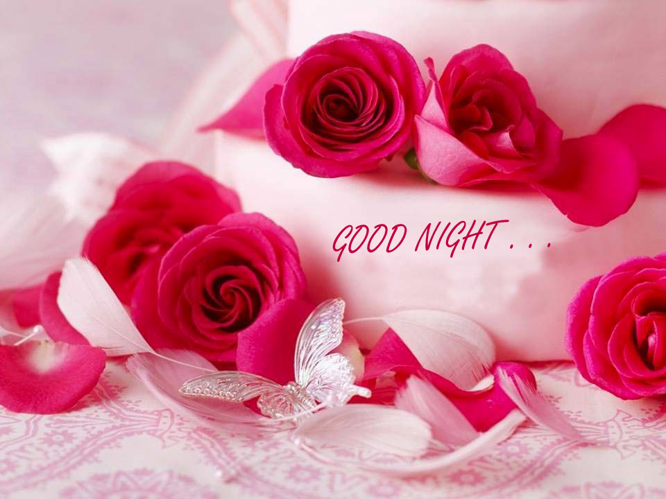 a rose flower with good night image beautiful